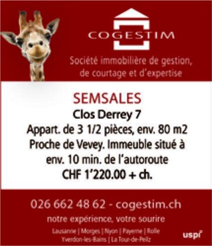 Appartement 3.5 pièces, Semsales, à vendre
