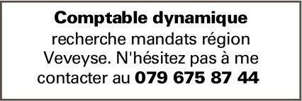 Comptable dynamique, recherche mandats, région de Veyveyse