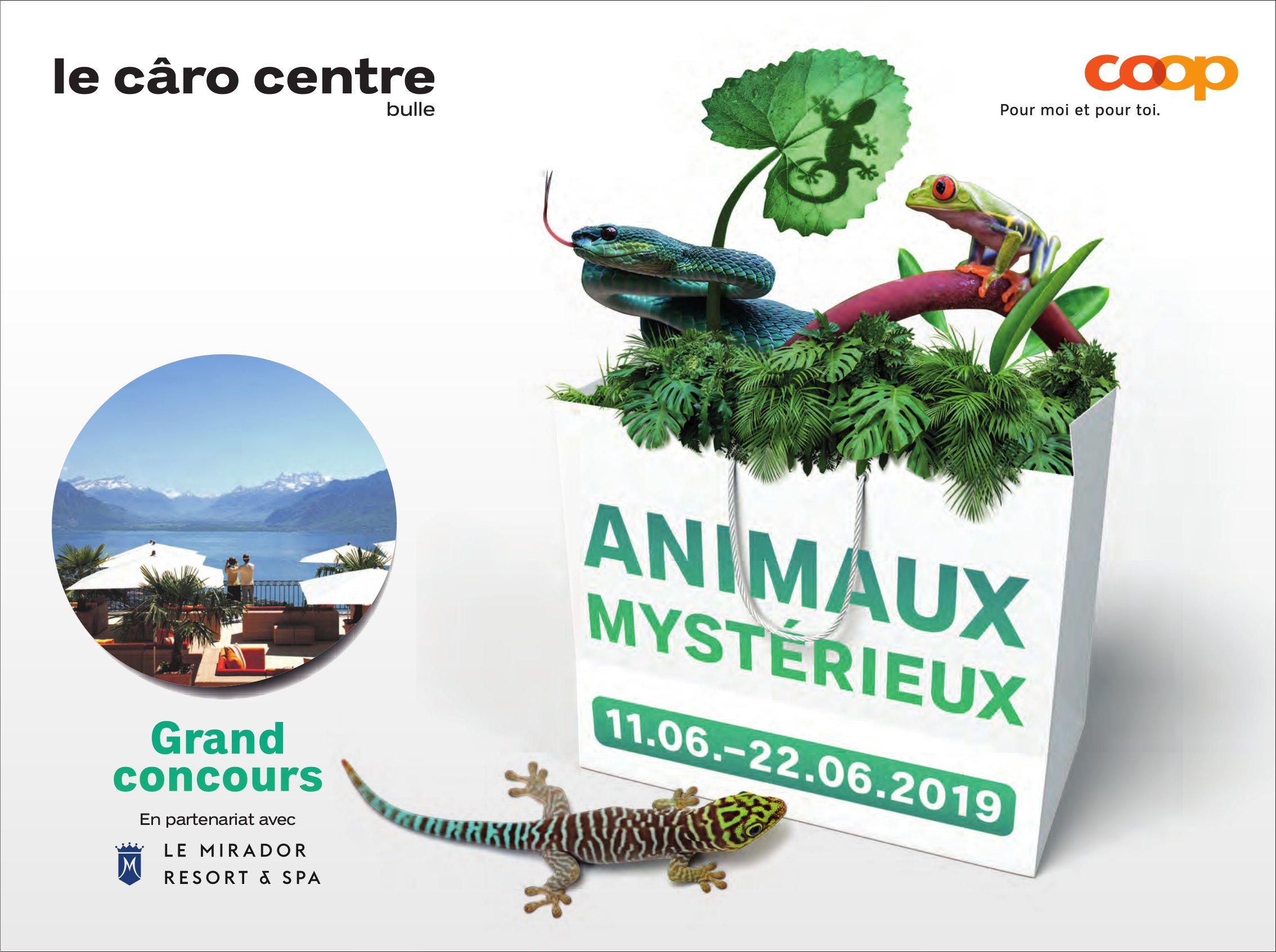 ANIMAUX MYSTÉRIEUX, 11.06.-22.-6.2019,  COOP le câro centre, Bulle