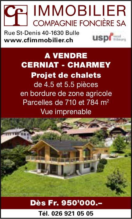 IMMOBILIER COMPAGNIE FONCIÈRE SA, CAHRMEY, Projet de chalets dès Fr. 950'000