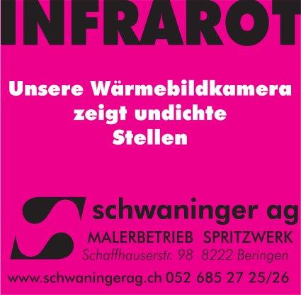 Schwaninger AG, Beringen - Unsere Wärmebildkamera zeigt undichte Stellen