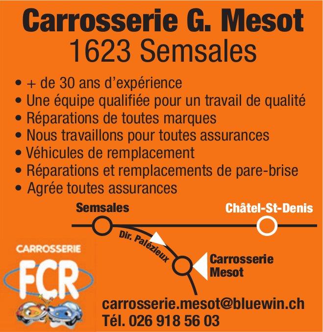 Carrosserie G. Mesot, Semsales, plus de 30 ans d'expérience
