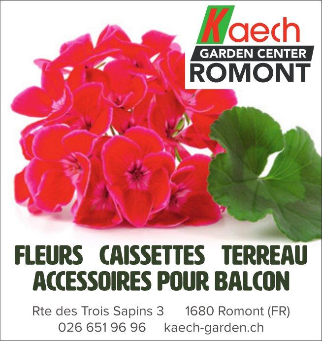 Kaech Garden center, Romont, Fleur caissettes terreau