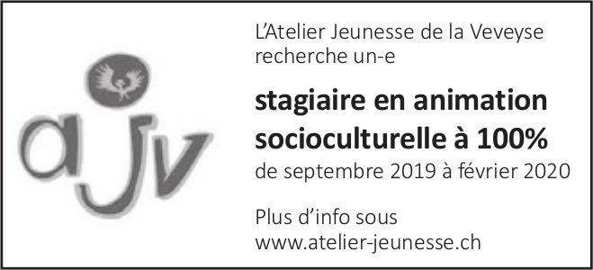 Stagiaire en animation socioculturelle à 100%, l'Atelier Jeunesse, Veveyse
