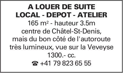 LOCAL - DEPOT - ATELIER 165 m2, Châtel-St-Denis, à louer