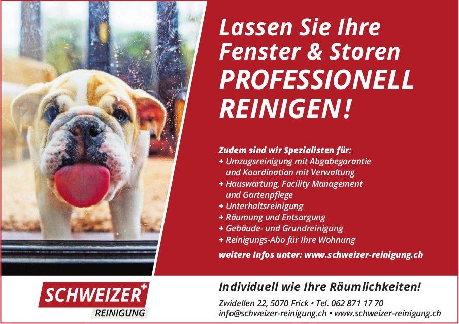 Schweizer Reinigung - Lassen Sie Ihre Fenster & Storen PROFESSIONELL REINIGEN!
