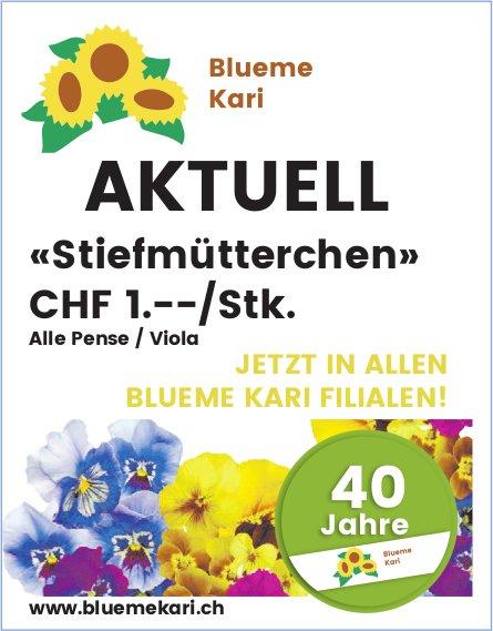 Blüme Kari - Aktuell: «Stiefmütterchen» CHF 1.--/Stk.