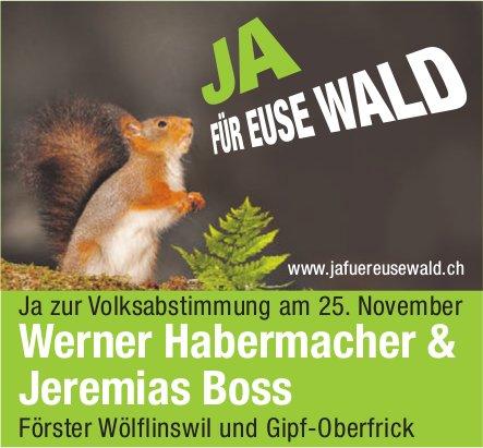 JA FÜR EUSE WALD - Werner Habermacher & Jeremias Boss