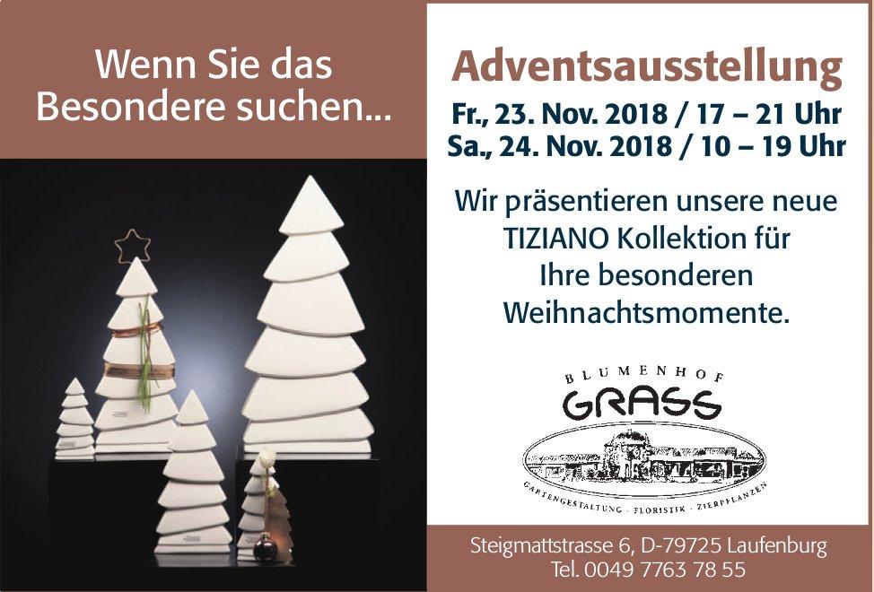 Blumenhof Grass, Laufenburg DE - Adventsausstellung am 23. + 24. November