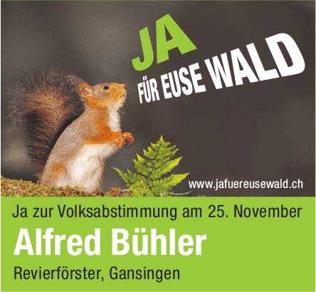 Alfred Bühler Revierförster, Gansingen: Ja zur Volksabstimmung am 25. November