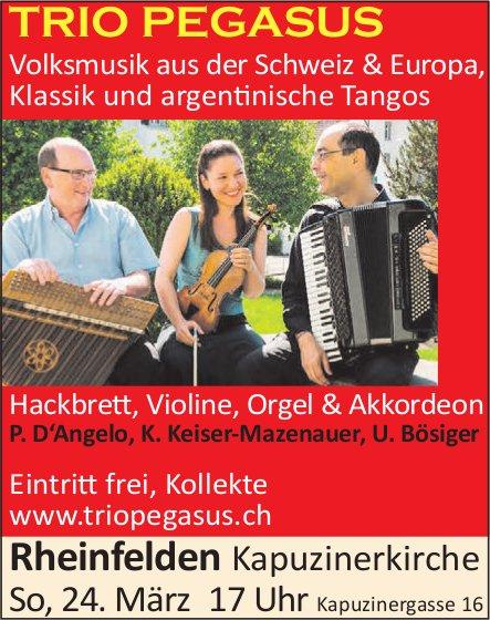 Rheinfelden Kapuzinerkirche - TRIO PEGASUS am 24. März