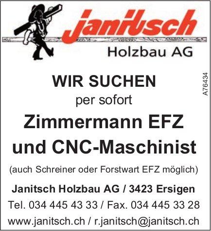 Janitsch Holzbau AG - Zimmermann EFZ und CNC-Maschinist per sofort gesucht