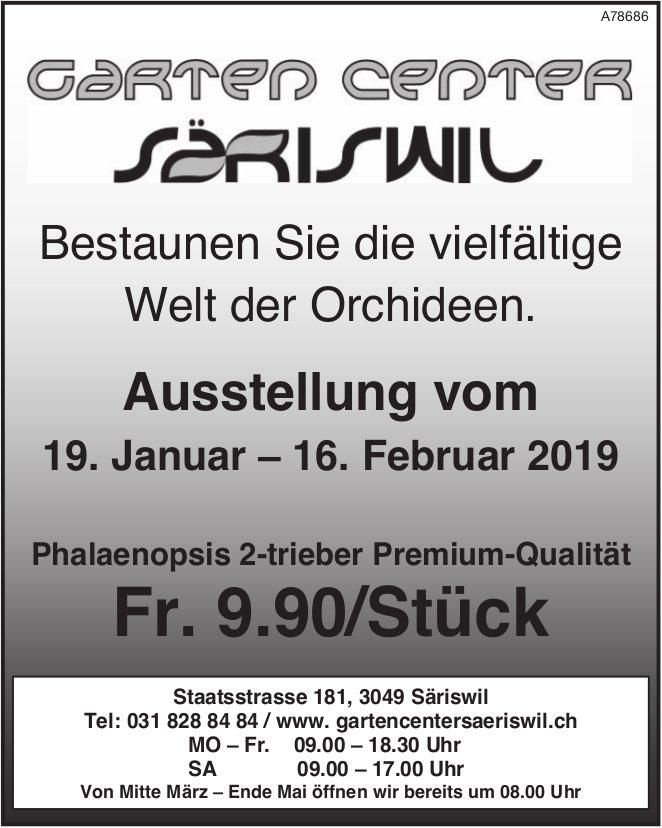 Garten Center Säriswil - Die Welt der Orchideen: Ausstellung vom 19.1. bis 16.2.