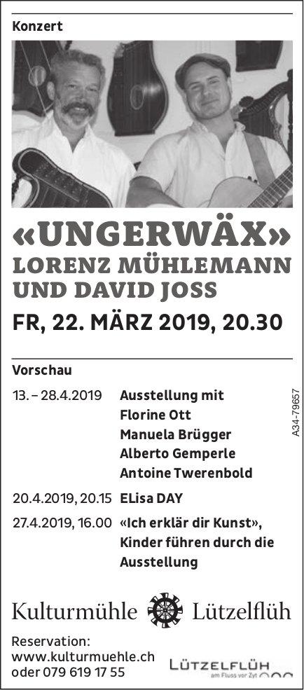 "Kulturmühle Lützelflüh - ""Ungerwäx"", Lorenz Mühlemann & David Joss am 22. März"