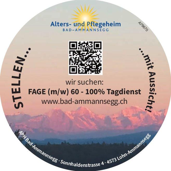 FAGE (m/w) 60 - 100% Tagdienst bei Alters- und Pflegeheim Bad-Ammsnnsegg gesucht
