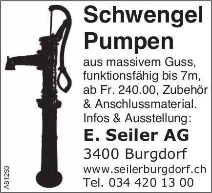 E. Seiler AG - Schwengel Pumpen aus massivem Guss