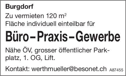 Büro – Praxis – Gewerbe, Burgdorf, zu vermieten