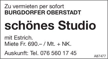 Schönes Studio, Burgdorfer Oberstadt, zu vermieten