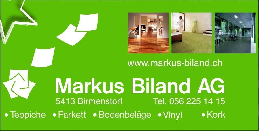 Teppiche / Parkett etc., Markus Biland AG