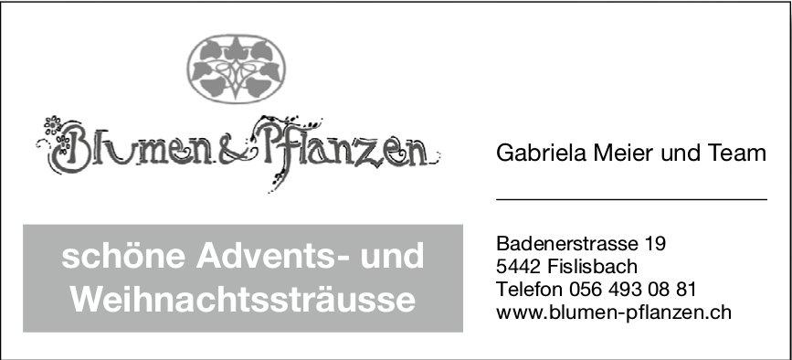 Schöne Advents- und Weihnachtssträusse, Blumen & Pflanzen Gabriela Meier und Team