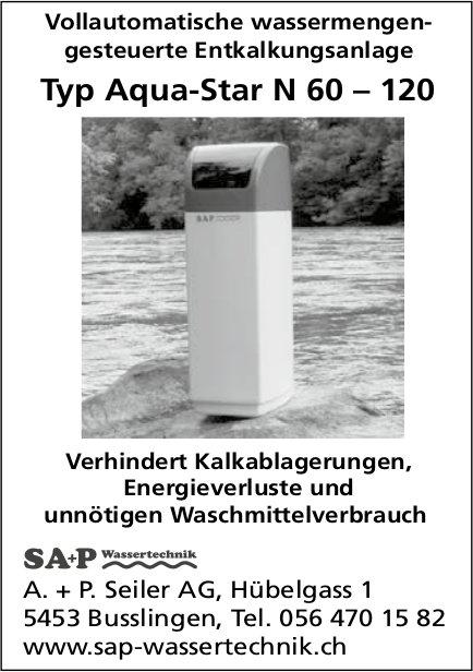 Vollautomatische wassermengengesteuerte Entkalkungsanlage, A. + P. Seiler AG