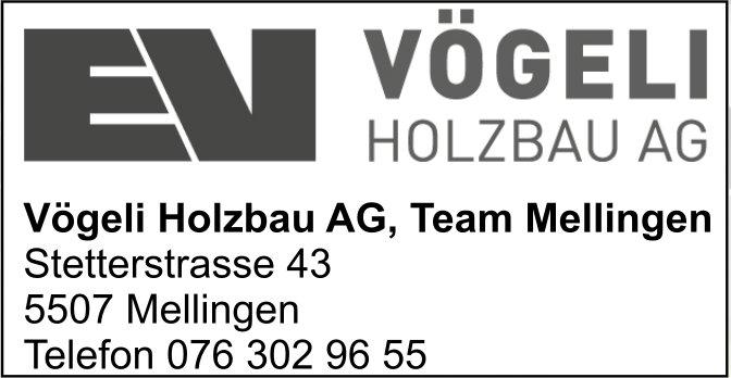 Vögeli Holzbau AG, Team Mellingen