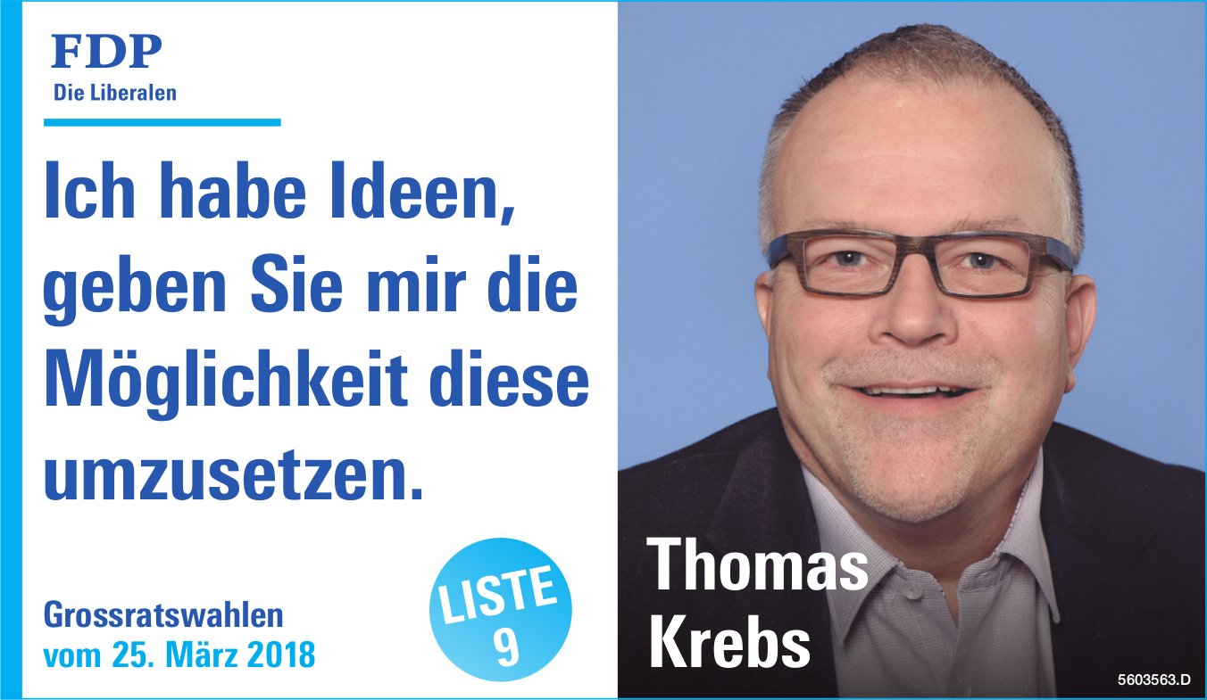 Thomas Krebs in den Grossrat