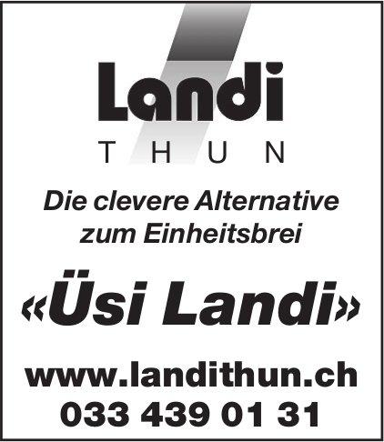 Landi Thun - «Üsi Landi»: Die clevere Alternative zum Einheitsbrei