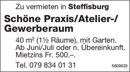 Schöne Praxis/Atelier-/Gewerberaum in Steffisburg zu vermieten