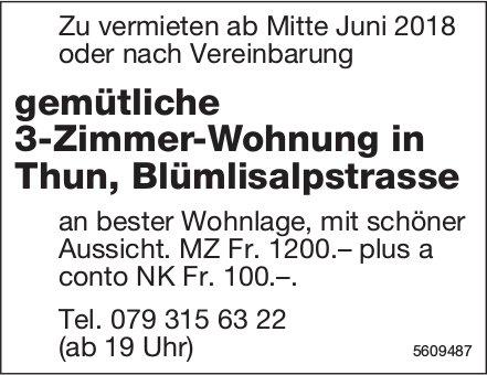 Gemütliche 3-Zimmer-Wohnung in Thun zu vermieten