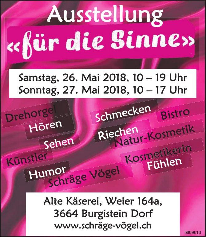 """Schräge Vögel - Ausstellung """"für die Sinne"""", 26. + 27. Mai"""