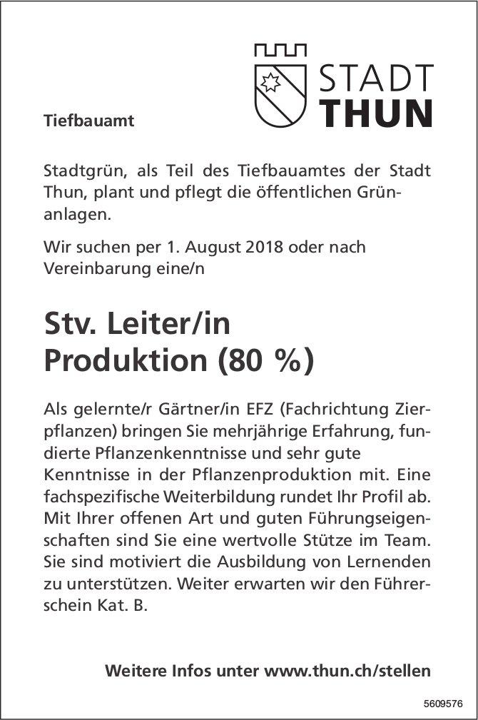 Stv. Leiter/in Produktion, Tiefbauamt Stadt Thun, gesucht