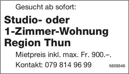 Studio- oder 1-Zimmer-Wohnung Region Thun ab sofort gesucht