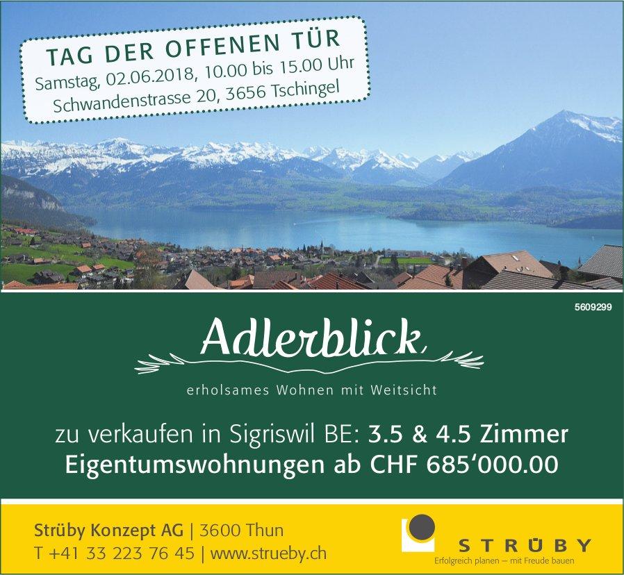 3.5 & 4.5 Zimmer Eigentumswohnungen zu verkaufen in Sigriswil - Tag der offenen Tür am 2. Juni