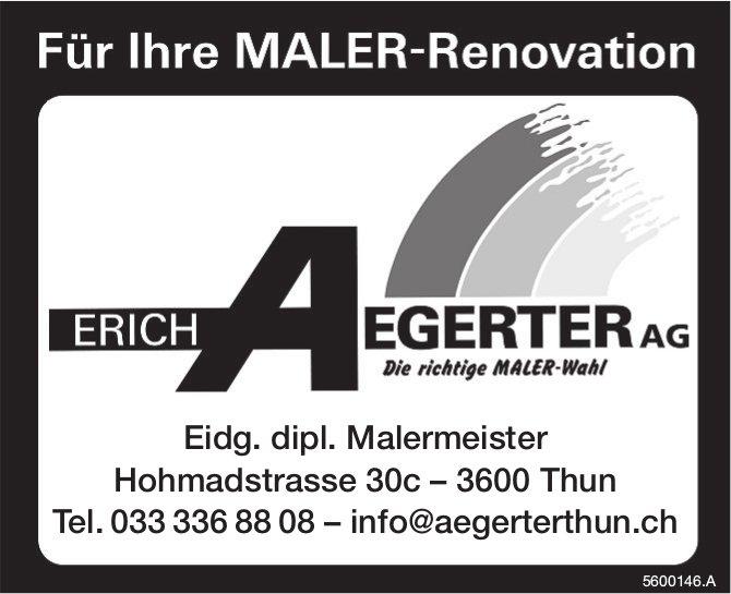 Erich Aegerter AG - Für Ihre MALER-Renovation