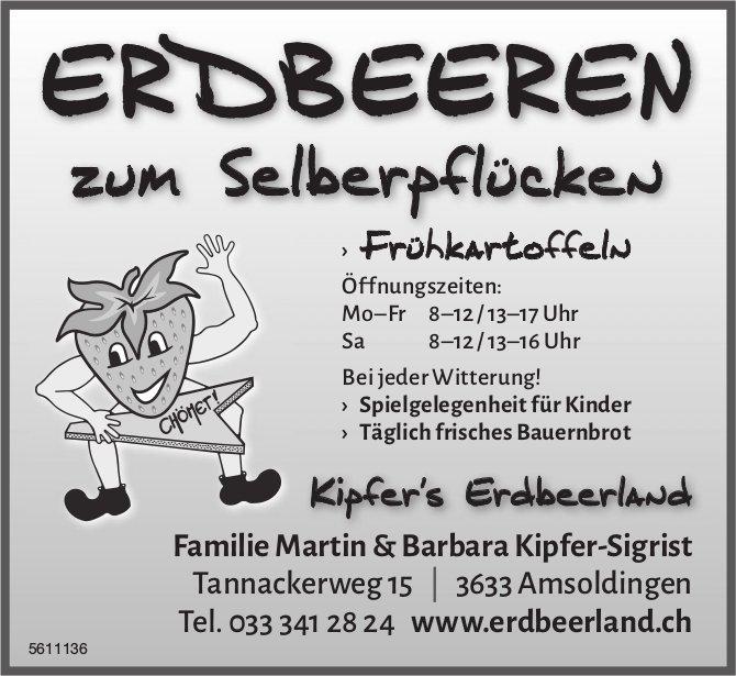 ERDBEEREN zum Selberpflücken - Kipfer's Erdbeerland, Amsoldingen