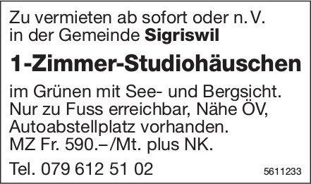 1-Zimmer-Studiohäuschen in der Gemeinde Sigriswil zu vermieten
