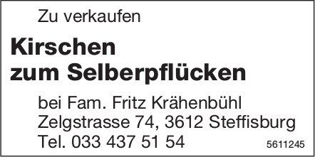 Kirschen zum Selberpflücken zu verkaufen bei Fam. Fritz Krähenbühl, Steffisburg