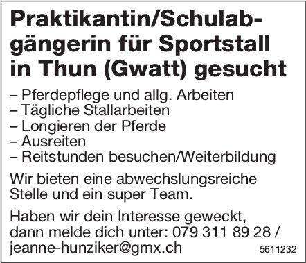 Praktikantin/Schulabgängerin für Sportstall in Thun (Gwatt) gesucht