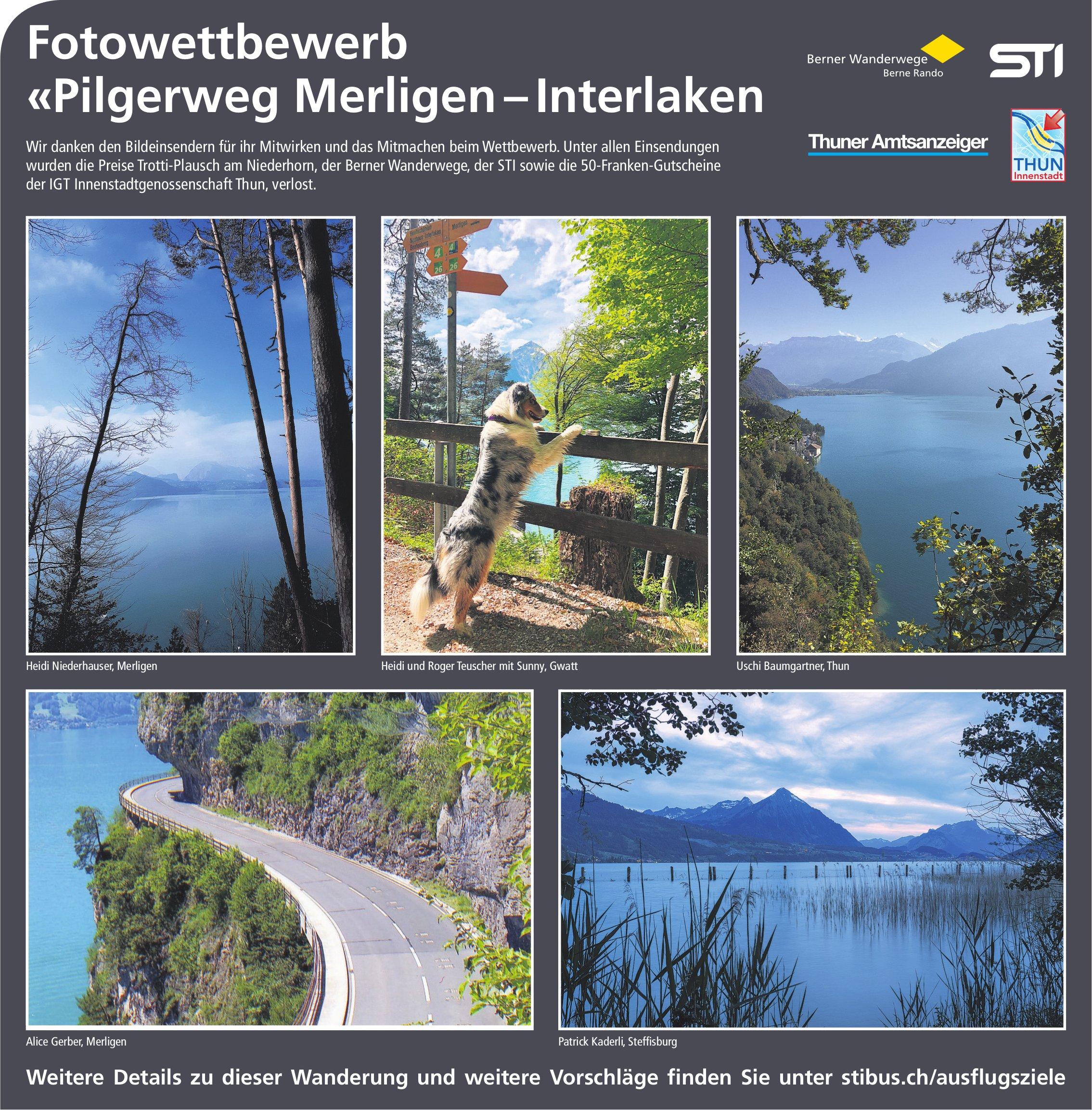 Fotowettbewerb «Pilgerweg Merligen – Interlaken: wir danken den Bildeinsendern