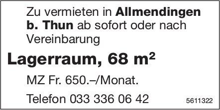 Lagerraum, 68 m2 in Allmendingen b. Thun zu vermieten
