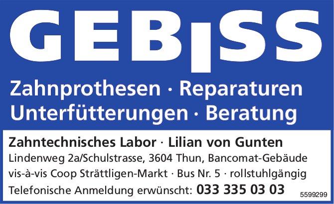 Zahntechnisches Labor, Lilian von Gunten, Thun - Zahnprothesen, Reparaturen uvm.