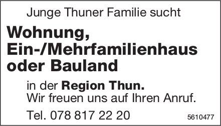 Junge Thuner Familie sucht Wohnung, Ein-/Mehrfamilienhaus oder Bauland in der Region Thun.