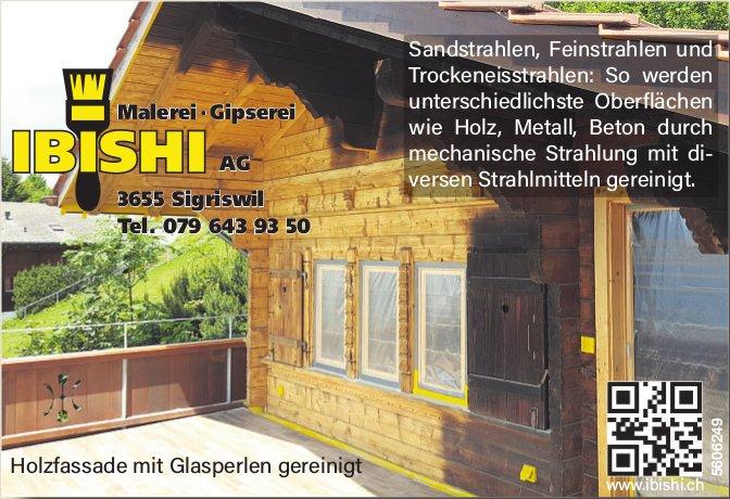 IBISHI AG - Malerei, Gipserei