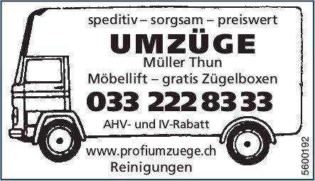 Müller Thun - Speditiv, sorgsam, preiswert Umzüge