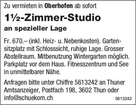 1½-Zimmer-Studio an spezieller Lage in Oberhofen zu vermieten