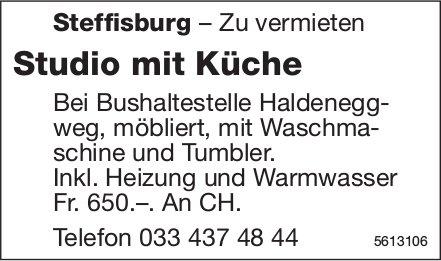 Studio mit Küche in Steffisburg zu vermieten