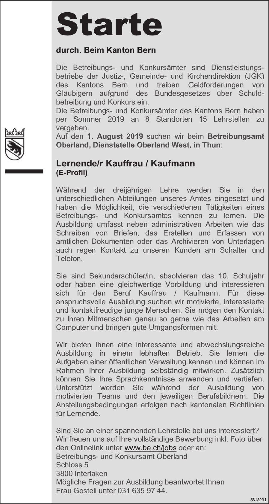 Lernende/r Kauffrau / Kaufmann (E-Profil), Betreibungsamt Oberland, Dienststelle Oberland West, Thun