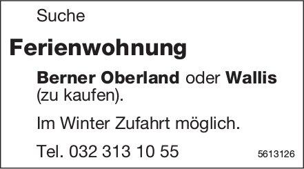 Suche Ferienwohnung Berner Oberland oder Wallis (zu kaufen).