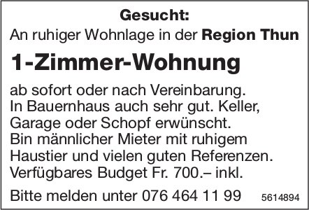 1-Zimmer-Wohnung in der Region Thun gesucht